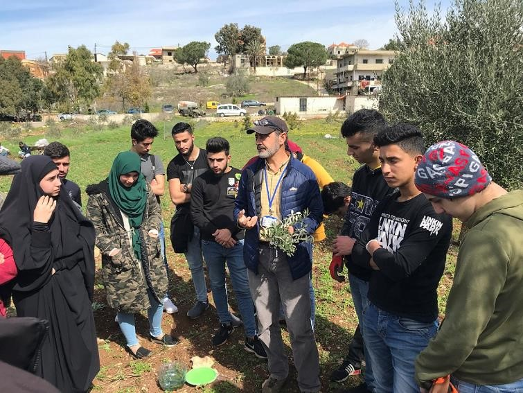 Lebanese farmers receive support to improve olive cultivation